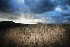 dusk-prairie-5051883